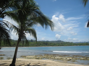 Costa Rica - Caribbean Side (125)