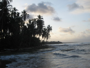 Costa Rica - Caribbean Side (26)