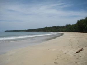 Costa Rica - Caribbean Side (73)